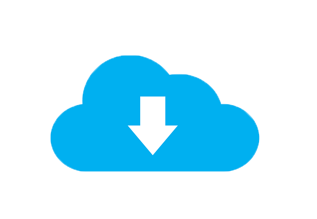 Wallet back-up - Wallet back-up - cloud download icon
